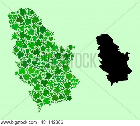 Vector Map Of Serbia. Mosaic Of Green Grape Leaves, Wine Bottles. Map Of Serbia Mosaic Designed From