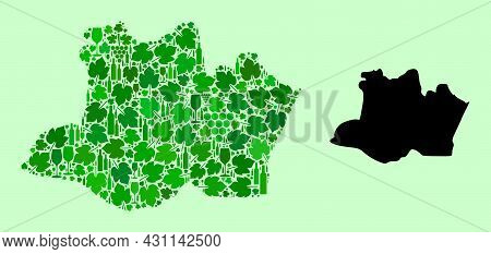 Vector Map Of Amazonas State. Collage Of Green Grape Leaves, Wine Bottles. Map Of Amazonas State Col