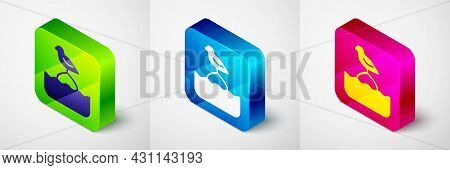Isometric Seagull Sits On A Buoy In The Sea Icon Isolated On Grey Background. Square Button. Vector