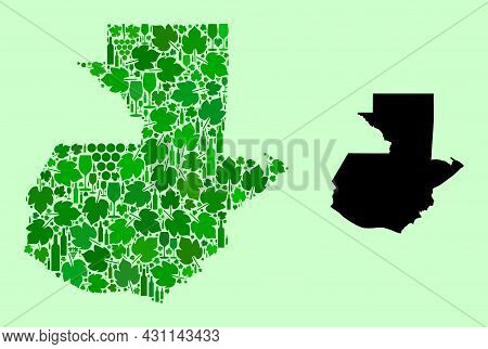 Vector Map Of Guatemala. Collage Of Green Grape Leaves, Wine Bottles. Map Of Guatemala Collage Compo