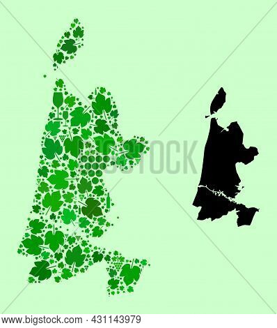 Vector Map Of North Holland. Collage Of Green Grapes, Wine Bottles. Map Of North Holland Collage Com