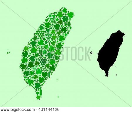 Vector Map Of Taiwan. Composition Of Green Grape Leaves, Wine Bottles. Map Of Taiwan Mosaic Designed