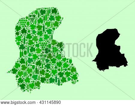 Vector Map Of Sindh Province. Mosaic Of Green Grapes, Wine Bottles. Map Of Sindh Province Mosaic Des