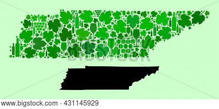Vector Map Of Tennessee State. Collage Of Green Grapes, Wine Bottles. Map Of Tennessee State Collage