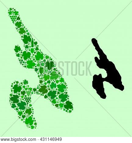 Vector Map Of Koh Phi Don. Collage Of Green Grape Leaves, Wine Bottles. Map Of Koh Phi Don Collage F