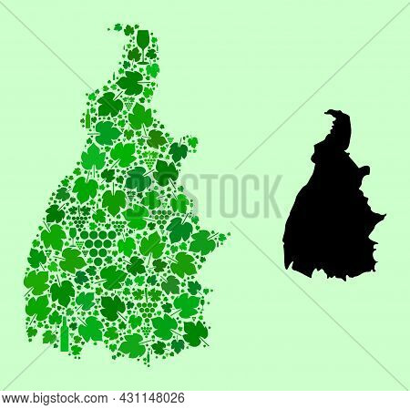 Vector Map Of Tocantins State. Collage Of Green Grapes, Wine Bottles. Map Of Tocantins State Collage