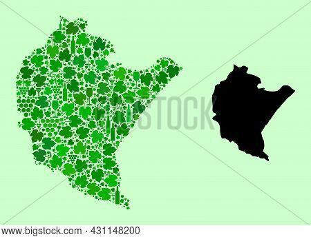 Vector Map Of Podkarpackie Province. Collage Of Green Grapes, Wine Bottles. Map Of Podkarpackie Prov