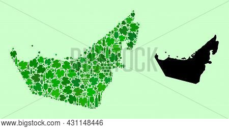 Vector Map Of United Arab Emirates. Collage Of Green Grapes, Wine Bottles. Map Of United Arab Emirat