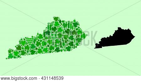 Vector Map Of Kentucky State. Mosaic Of Green Grape Leaves, Wine Bottles. Map Of Kentucky State Mosa