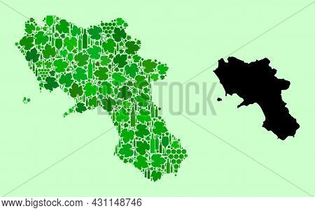 Vector Map Of Campania Region. Collage Of Green Grape Leaves, Wine Bottles. Map Of Campania Region C