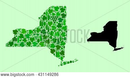 Vector Map Of New York State. Collage Of Green Grapes, Wine Bottles. Map Of New York State Collage D