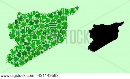 Vector Map Of Syria. Collage Of Green Grape Leaves, Wine Bottles. Map Of Syria Collage Created From