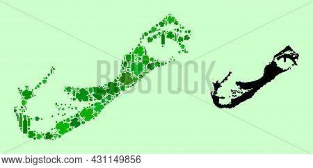 Vector Map Of Bermuda Islands. Collage Of Green Grape Leaves, Wine Bottles. Map Of Bermuda Islands C