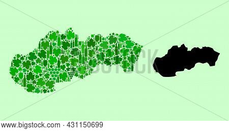 Vector Map Of Slovakia. Mosaic Of Green Grape Leaves, Wine Bottles. Map Of Slovakia Mosaic Created W