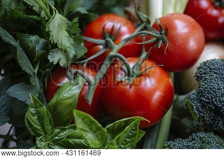 Tomatoes, Brocoli, Green Onions, And Basil Close Up