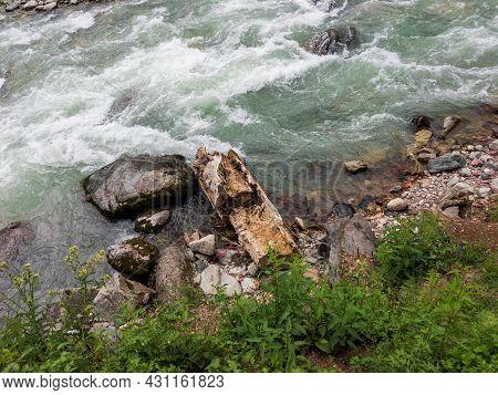 Deforestation Tree Log In River Of Kalam Valley Swat