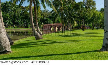 Green Grass Lawn Garden By A Lake Decorate Coconut Palm Tree And  Greenery Trees Bridge On Backgroun
