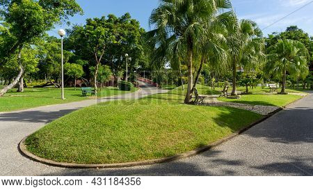 Green Grass Lawn Garden By The Walkway Decorate With White Seating Chair Under Palm Tree, Greenery T