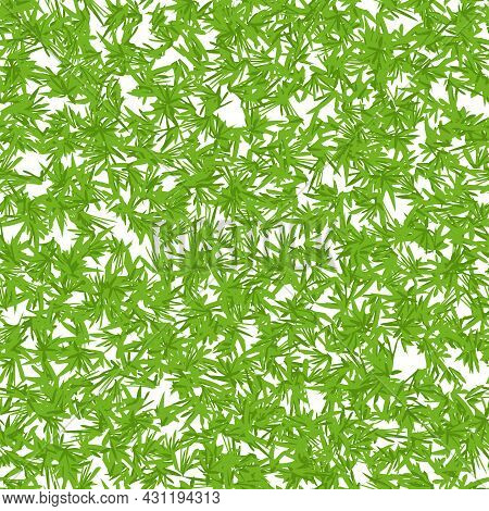 Seamless Pattern With Marijuana Hemp Leaves Isolated On White. Hand Drawn Cannabis Leaves. Marijuana