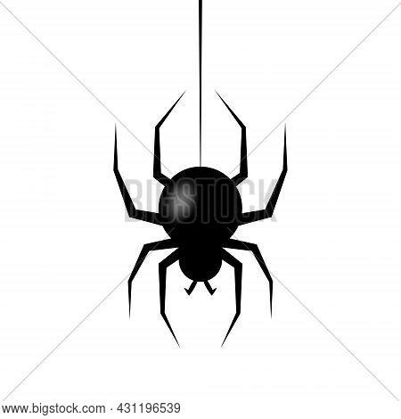 Realistic Spider Hanging On Cobweb. Halloween Character. Vector Illustration