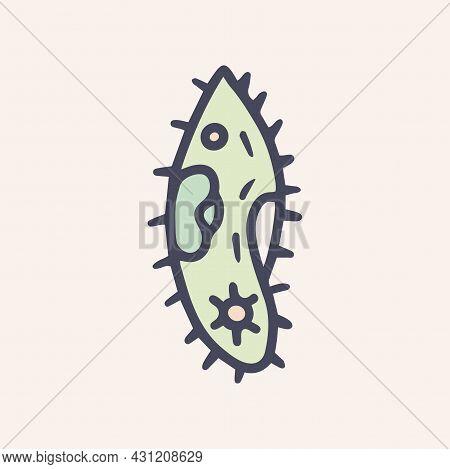 Paramecium Caudatum Color Vector Doodle Icon Design