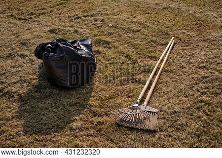Cleaning The Lawn From Mowed Grass  With A Rake And And A Broom  For Better Growth Of Green Grass. B