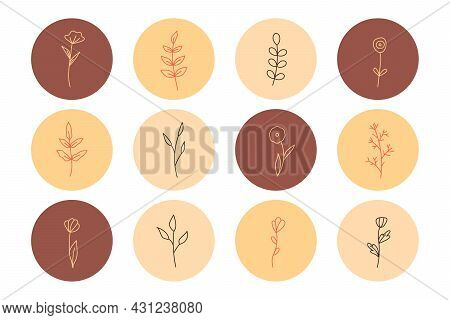 Plants And Flowers With Leaves In A Minimalistic Simple Style. Handmade Floral Logo. Botanical One L