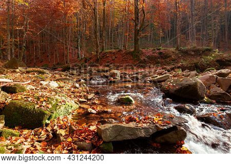 Mountain River In The Autumn Forest. Trees In Fall Foliage. Leaves On The Stones And Ground By The S