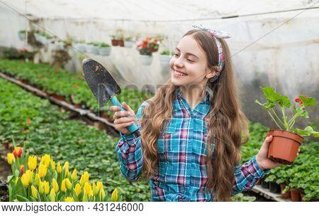 Happy Teen Girl Florist Planting Pot Plants In Greenhouse, Floristry