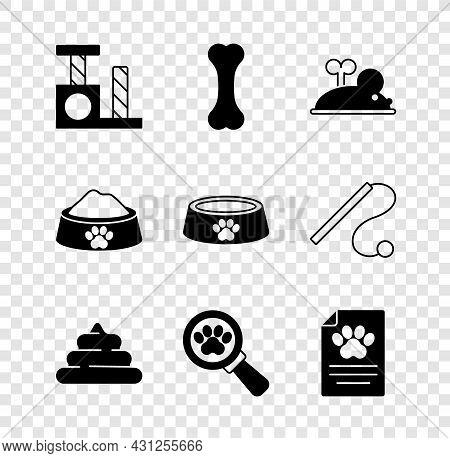 Set Cat Scratching Post, Dog Bone, Clockwork Mouse, Shit, Veterinary Clinic, Clinical Record Pet, Pe