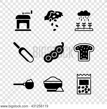 Set Manual Coffee Grinder, Seed, Plant Sprouts Grow The Rain, Measuring Cup With Flour, Flour Bowl,