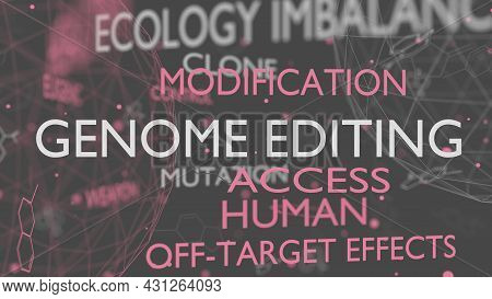 Genome Editing Words Cloud. Ethical And Safety Concept