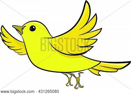 Yellow Sparrow Flying In Air. Cute Yellow Bird. Birds From Different Parts Of World. Common Birds. B