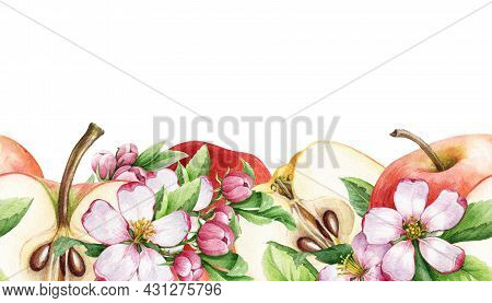 Apple Fruit And Flower Seamless Border. Watercolor Floral Illustration. Red Apple, Half Cutted And S