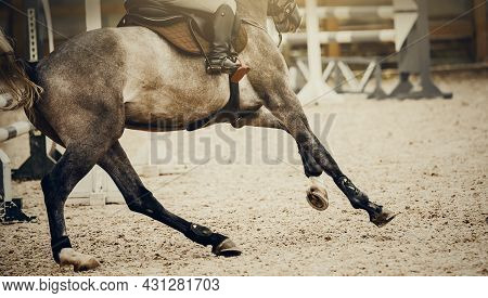 Equestrian Sport. Galloping Horse. Dressage Of Horses In The Arena. The Legs Of A Horse Galloping, R