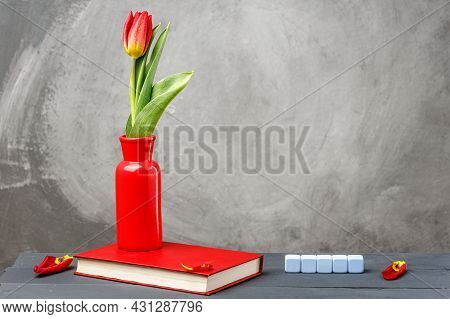 Red Vase With Red Tulips On A Gray Background. Vase With Flowers On The Red Book. The Background Is