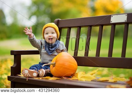 Cute Small Baby Boy Sitting Near Small Colourful Pumpkin On Sunny Autumn Day. Family Time At Thanksg