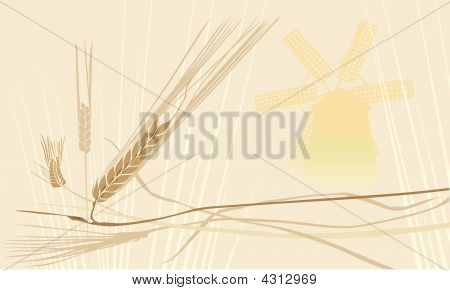 Wheat Ears And Windmill