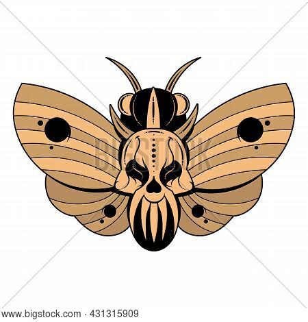 Illustration Of A Butterfly Dead Head With A Skull-shaped Pattern On The Thorax. Vector Banner With