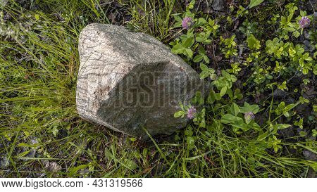 Scenic Forest Landscape With Big Stone With Green Grasses Among Thickets And Trees. Vivid Scenery Wi