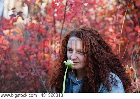 Woman With Flower Close Up. Woman With Long Curvy Brown Hair Smell White Flower In Autumn Forest Wit