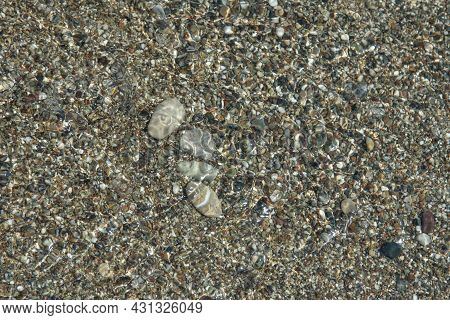 Multicolored Pebbles Under The Water Of The Mediterranean Sea. Pebble Background. Coast. Abstract Ba