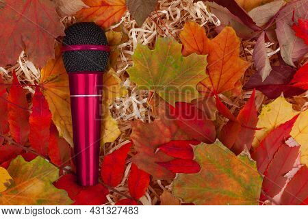 Red Microphone Placed On Yellow Leaves. Musical Concert, Show And Autumn. Space For Text - Copy Spac