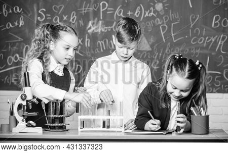 Formal Education. Girls And Boy Student Conduct School Experiment With Liquids. School Laboratory. G