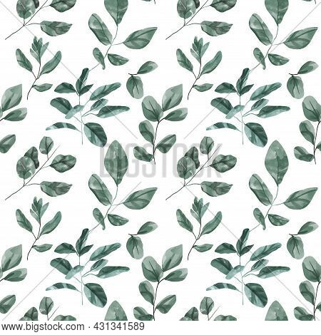 Seamless Floral Pattern With Eucalyptus Leaves. Watercolor Seamless Pattern Garden