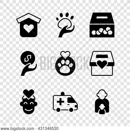 Set Shelter For Homeless, Animal Volunteer, Donation And Charity, Volunteer, Ambulance Car, Taking C