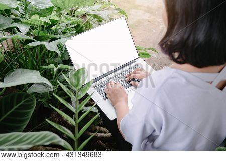 Creative Freelancer Woman Using Laptop In Cafe With Houseplant, Business Woman Online Working On Com
