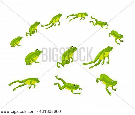 Set Of Green Frogs Jumping In Sequence. Cartoon Vector Illustration. Leaping Toads On White Backgrou