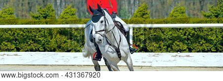 Beautiful Girl On Gray Horse In Jumping Show, Equestrian Sports. Dappled Horse And Girl In Uniform G