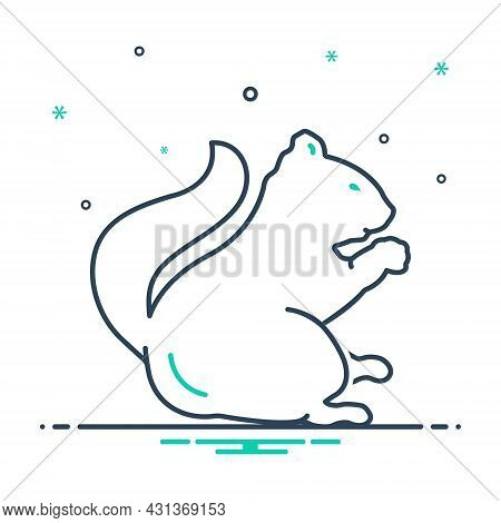 Mix Icon For Squirrel Chipmunk Tail Skunk Domestic Fauna Forest Herbivorous Wild Nature Animal Jungl